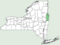 Scirpus ancistrochaetus NY-dist-map2.png