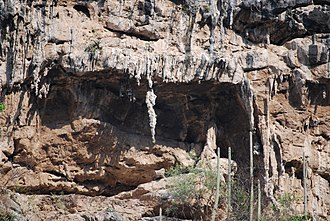 Sumidero Canyon - Seahorse stalactite in a cave on one of the canyon walls