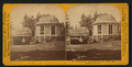 Section of the original Big Tree, and house on the Stump, by Lawrence & Houseworth 2.png