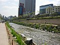 Seoul-Cheonggyecheon-07.jpg