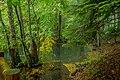 Seven Lakes National Park Bolu Turkey (21910065840).jpg