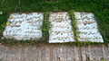 Shari'at Madari Family Gravestones - Mausoleum of Attar - Nishapur.JPG