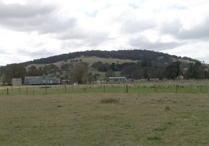 Sheep station - Shearing shed, meat house and shearers' quarters, on a station, Northern Tablelands, New South Wales, Australia
