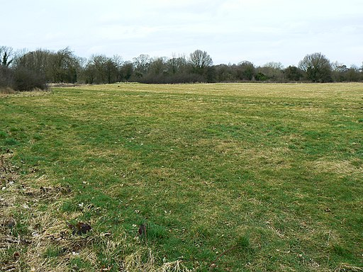 Sheldon Country Park, Elmdon, Birmingham - geograph.org.uk - 1770031