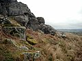 Shitlington Crags - geograph.org.uk - 1878.jpg