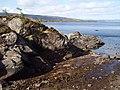 Shoreline, Loch Sunart - geograph.org.uk - 175800.jpg