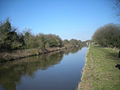 Shropshire Union Canal in late winter - geograph.org.uk - 1746684.jpg