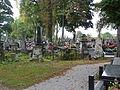 Siedlce Cmentarz Widok2 2012 micbor.JPG