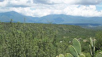 Tamaulipas - Sierra Madre Oriental