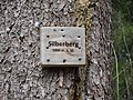 Silberberg Hinterzarten.jpg