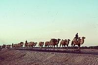 Silk Road 1992.jpg
