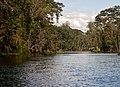 Silver Springs - panoramio (7).jpg