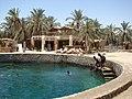 Siwa Oasis, Qesm Siwah, Matrouh Governorate, Egypt - panoramio (2).jpg