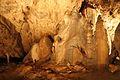 Sloupskosošůvské jeskyně63.jpg