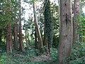 Smarmore, Co. Louth, Ireland - panoramio (16).jpg