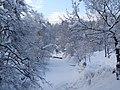 Snø - panoramio.jpg