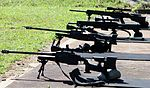 Snipers (6883644022).jpg