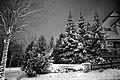 Snow at Rockhill (3127714700).jpg