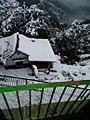Snow of shimla.jpg