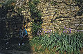 Southfrance-1987-0036 hg.jpg