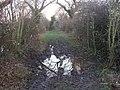 Splodge - geograph.org.uk - 684476.jpg