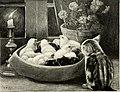 St. Nicholas (serial) (1873) (14597064608).jpg