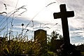 St Mary's Graveyard.jpg