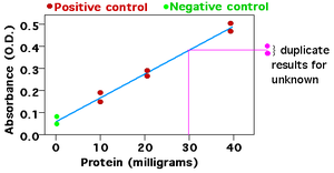 Standard curve - An example of a standard curve showing the absorbance of different concentrations of protein (two trials for each measurement). The concentration of protein in a different sample is determined by determining where on the standard curve it should go - in this case, 30 milligrams.