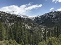 Stanislaus National Forest, Pinecrest, United States May 07, 2017 021153.jpeg