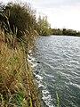 Startops Reservoir, Tring - Waves Breaking against embankment - geograph.org.uk - 1221060.jpg