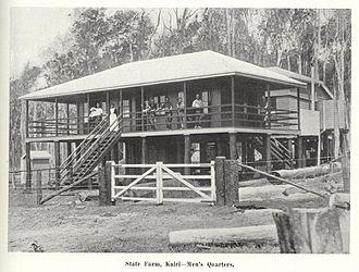 Kairi, Queensland - Men's quarters at Kairi State Farm, circa 1913