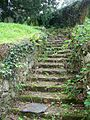 Steps, Church of the Holy Trinity, Torbryan - geograph.org.uk - 940491.jpg