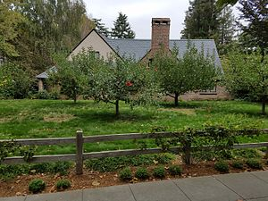 Steve Jobs - Steve Jobs's house, as viewed from an adjacent sidewalk. Abundant fruit trees are visible next to the house.