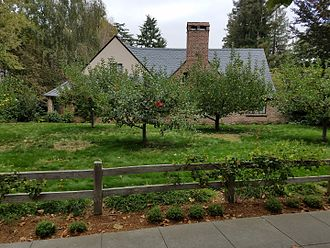 Steve Jobs - Jobs's house, as viewed from an adjacent sidewalk. Abundant fruit trees are visible next to the house