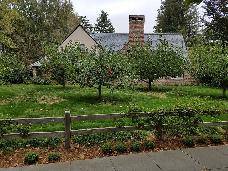 SteveJobs house in PaloAlto with fruit trees.jpg