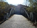 Steyr Bogenbrücke Fabrikinsel (4).JPG