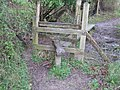 Stile at Winters Copse - geograph.org.uk - 1246179.jpg