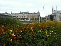 Stockholm città dei fiori e del verde. (18910341738).jpg