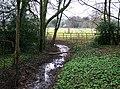Stream near Cockfield Hall - geograph.org.uk - 1107163.jpg