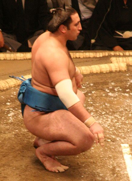 File:Sumo May09 Tochinoshin.jpg