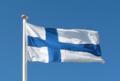 Suomen lippu valokuva1.png