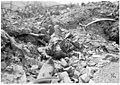 Sur les positions prises à l'ennemi, un mort autrichien - Médiathèque de l'architecture et du patrimoine - AP62T104634.jpg