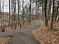 Suwanee Creek Greenway, March 2019 1.jpg