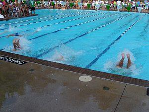 بحث عن السباحة from upload.wikimedia.org