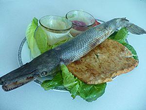 タバスコ料理's relation image