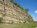 Talaingod-San Fernando Road - panoramio (105).jpg