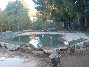 English: we build a pond - part 4: pond ready ...