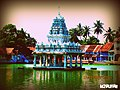 Temple tank in Kerala.jpg