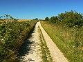 The Ridgeway, near Hackpen Hill - geograph.org.uk - 885326.jpg
