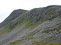 The southern flanks of Meall nan Ceapraichean - geograph.org.uk - 1750037.jpg